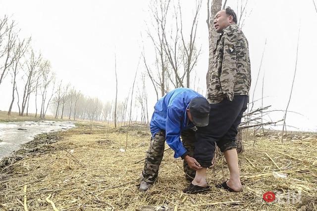 TQ: Lão cụt dắt lão mù trồng 10.000 cây bảo vệ làng - 5