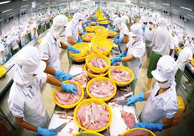 Quý 1/2015: Xuất khẩu thuỷ sản có thể giảm 30% - 1