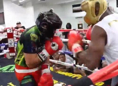 Thị uy Pacquiao, Mayweather đấm túi bụi đối tác - 1