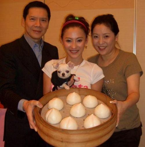 Trương Bá Chi nhận vai diễn bất chấp nguy cơ tẩy chay - 1
