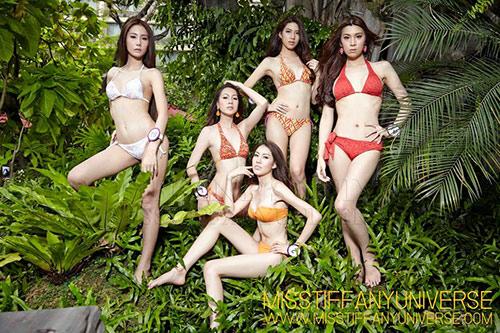 Hé lộ ảnh bikini của dàn thí sinh Hoa hậu chuyển giới - 1