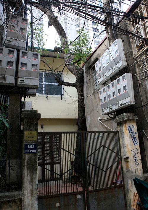 HN: Cây đâm xuyên nhà, vẫn quyết giữ dù được trả trăm triệu - 12