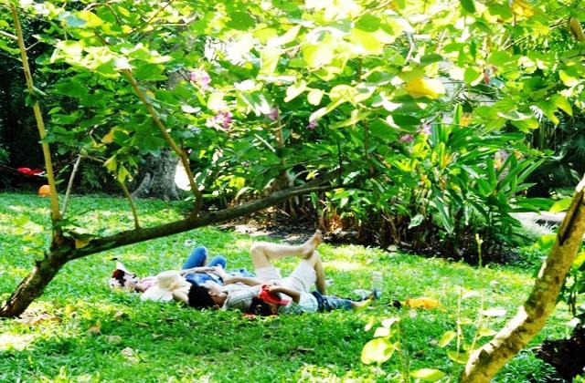 """Người dân """"hành xác"""" trong khu vui chơi ở TPHCM - 11"""