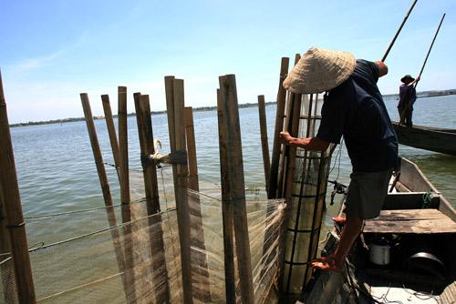 Ảnh: Cuộc sống bình dị trên phá Tam Giang - 2