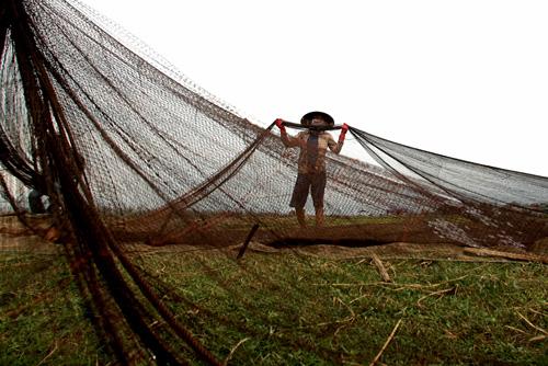 Ảnh: Cuộc sống bình dị trên phá Tam Giang - 9