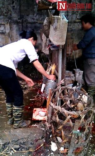 Đột nhập cơ sở làm gà siêu bẩn dịp Tết dương lịch - 7