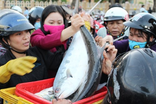 """Tắc đường vì tranh nhau mua cá """"đặc sản"""" rẻ bất ngờ - 3"""