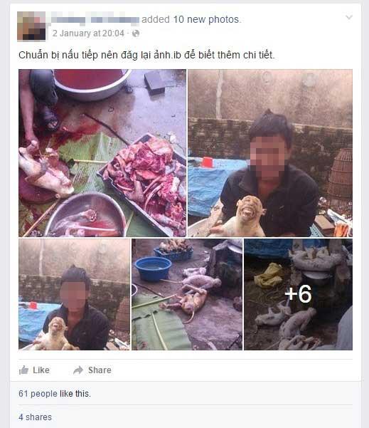 "Giết khỉ dã man rồi khoe ""chiến tích"" trên facebook - 1"