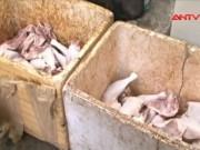 Video An ninh - Kinh hãi hóa chất biến thịt gà thối thành thịt tươi