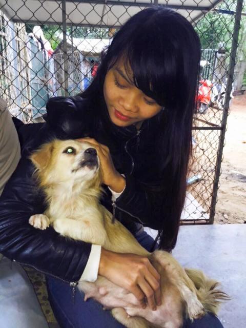 Chàng trai Hà Tĩnh thuê trọ cứu chó mèo bị bỏ rơi ở Huế - 11