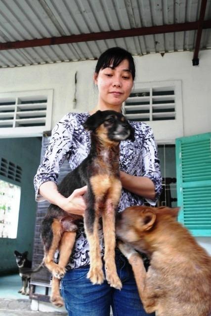 Chàng trai Hà Tĩnh thuê trọ cứu chó mèo bị bỏ rơi ở Huế - 8
