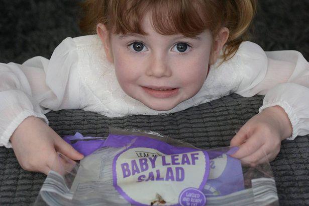 Cô bé 4 tuổi suýt mất mạng vì bị côn trùng cắn khi ăn salad - 1
