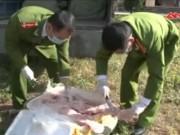 Thị trường - Tiêu dùng - Bắt 900kg nầm lợn lậu hôi thối mốc xanh từ TQ