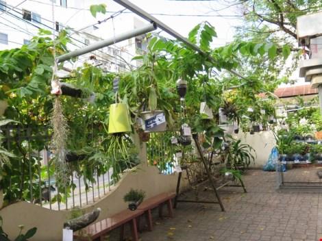 Lạ mắt vườn cây từ vật dụng tái chế của học sinh lớp 8 - 10