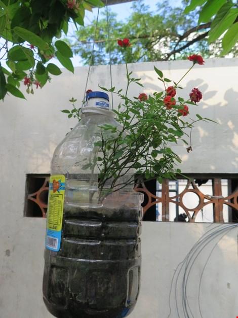 Lạ mắt vườn cây từ vật dụng tái chế của học sinh lớp 8 - 12