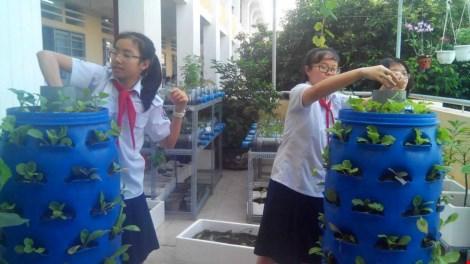 Lạ mắt vườn cây từ vật dụng tái chế của học sinh lớp 8 - 5
