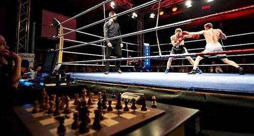 Thú vị không tưởng với bộ môn đấm bốc cờ vua - 11