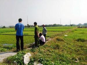 Tin tức trong ngày - Bắt quả tang nông dân dùng dầu nhớt thải... tưới rau