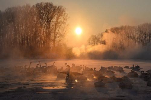 Ảnh: Những vùng hồ đẹp lặng người trên thế giới - 7
