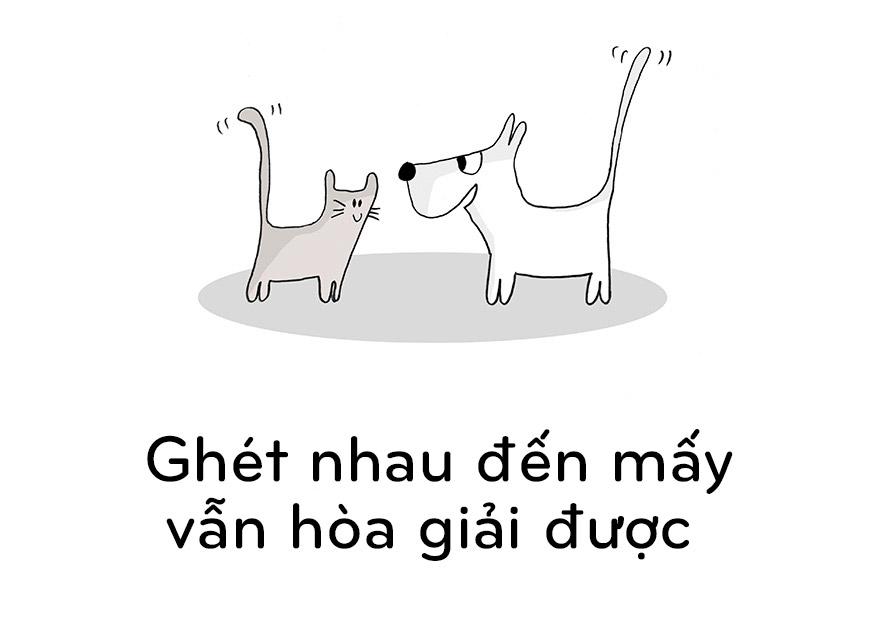 19 điều chúng ta nên học từ mèo - 5
