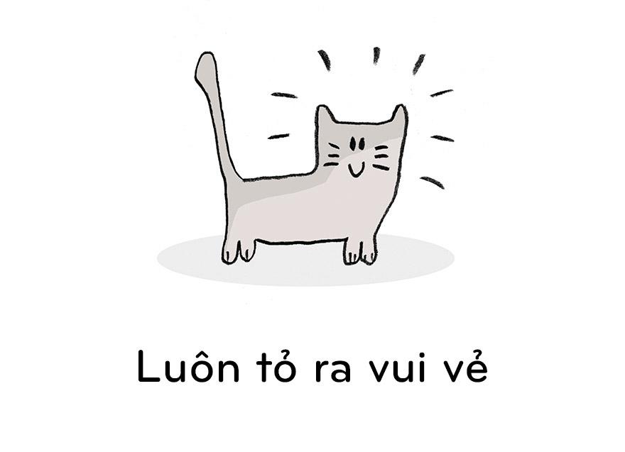19 điều chúng ta nên học từ mèo - 10