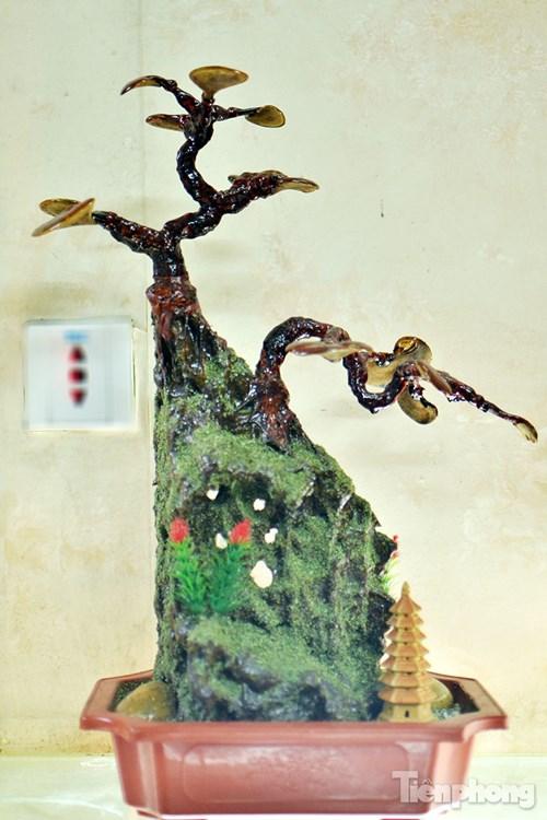 Cận cảnh nấm linh chi bonsai tiền triệu chơi Tết - 13