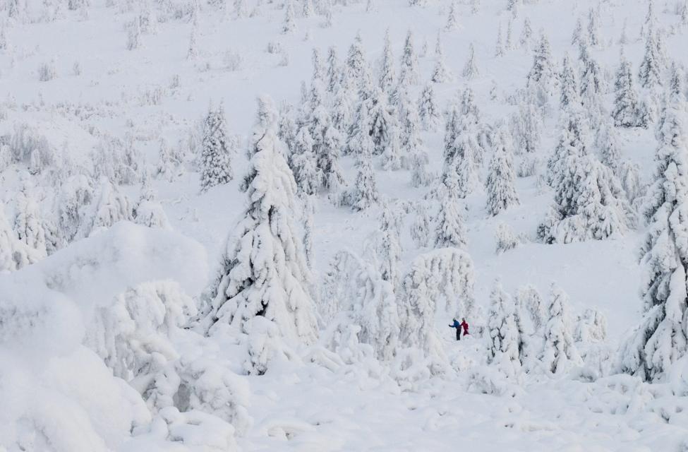 Ngắm mùa đông băng tuyết trắng xóa nhiều nơi trên TG - 6