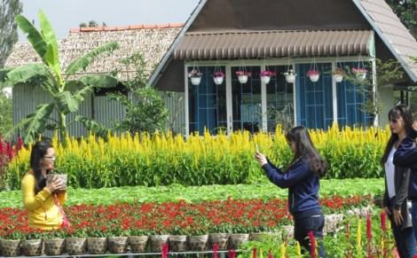 Về làng hoa Sa Đéc chụp ảnh tự sướng - 4
