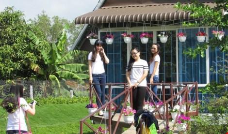 Về làng hoa Sa Đéc chụp ảnh tự sướng - 5