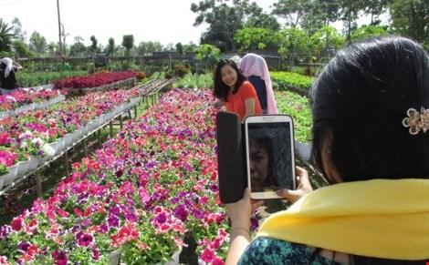 Về làng hoa Sa Đéc chụp ảnh tự sướng - 6