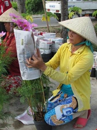Về làng hoa Sa Đéc chụp ảnh tự sướng - 7
