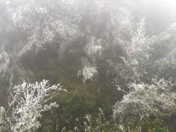 Miền Bắc có khả năng xảy ra băng giá và mưa tuyết - 1