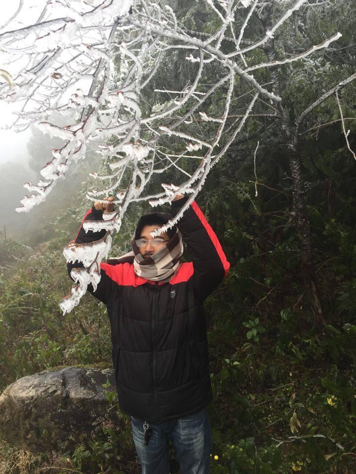 Lên phương án đối phó với đợt rét kỷ lục, có mưa tuyết - 1