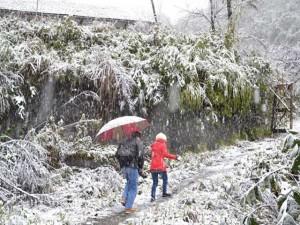 Tin tức trong ngày - Lên phương án đối phó với đợt rét kỷ lục, có mưa tuyết