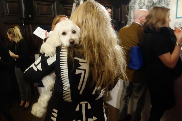 Đám cưới xa hoa của đôi chó nổi tiếng nhất Instagram - 2