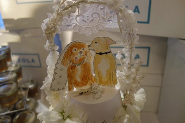 Đám cưới xa hoa của đôi chó nổi tiếng nhất Instagram - 4