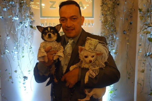 Đám cưới xa hoa của đôi chó nổi tiếng nhất Instagram - 5