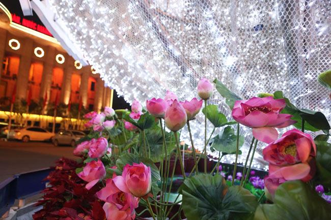 Ảnh: Thủ đô tràn ngập sắc màu đón năm mới - 9