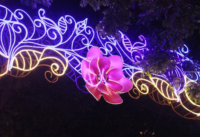 Ảnh: Thủ đô tràn ngập sắc màu đón năm mới - 7