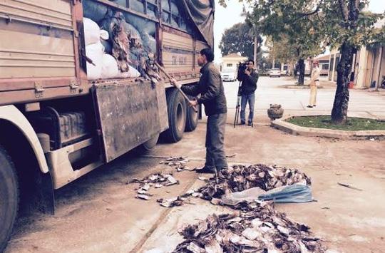 Xe tải chở 20 tấn mực khô đang phân hủy ra HN tiêu thụ - 1