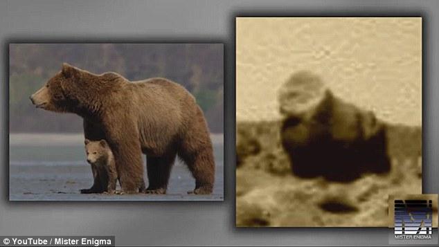 Phát hiện khỉ đột và lạc đà trên sao Hỏa - 2