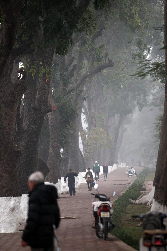 Ảnh: Sương mù biến HN chiều đông thành Sa Pa buổi sớm - 1