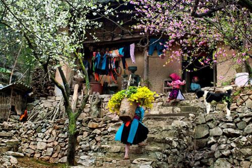 Những địa điểm du lịch hot nhất dịp Tết Nguyên đán 2016 - 1