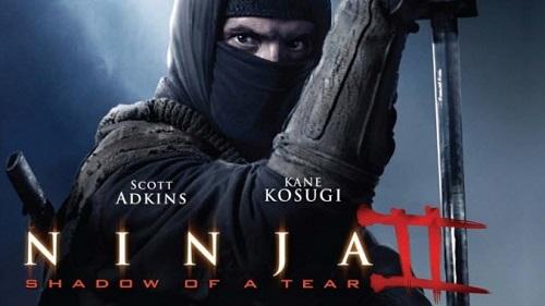 Video phim: Hoa mắt với võ thuật trong 'Ninja báo thù 2' - 2