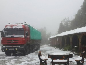 Tin tức trong ngày - Lào Cai ra công điện khẩn ứng phó với mưa tuyết