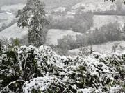 Tin tức trong ngày - Bắc Bộ chìm trong lạnh giá, Hà Nội rét tới 6 độ C