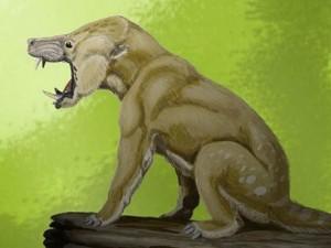 Phi thường - kỳ quặc - Những động vật kì quặc từng thống trị Trái Đất