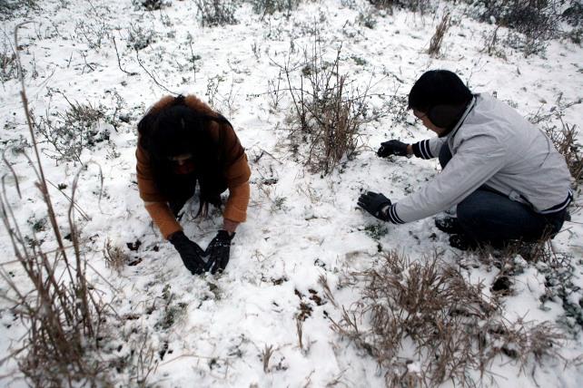 Ảnh: Du khách thích thú nặn người tuyết ở Sa Pa - 4