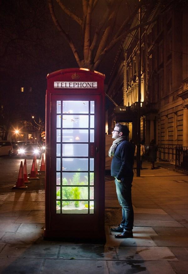 Lạc trong thánh đường ánh sáng ở London - 3