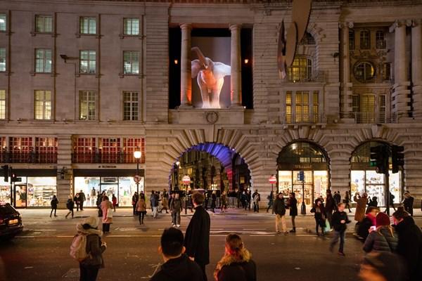 Lạc trong thánh đường ánh sáng ở London - 7